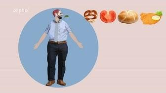 Kalorien und Energie - Ernährung | alpha Lernen erklärt Biologie