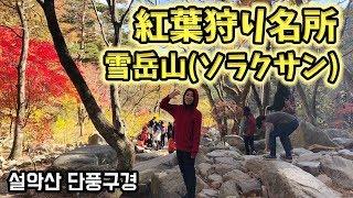 韓国の紅葉狩り名所・雪岳山(ソラクサン)さんぽ【韓国・束草(ソクチョ)バスツアー #4】