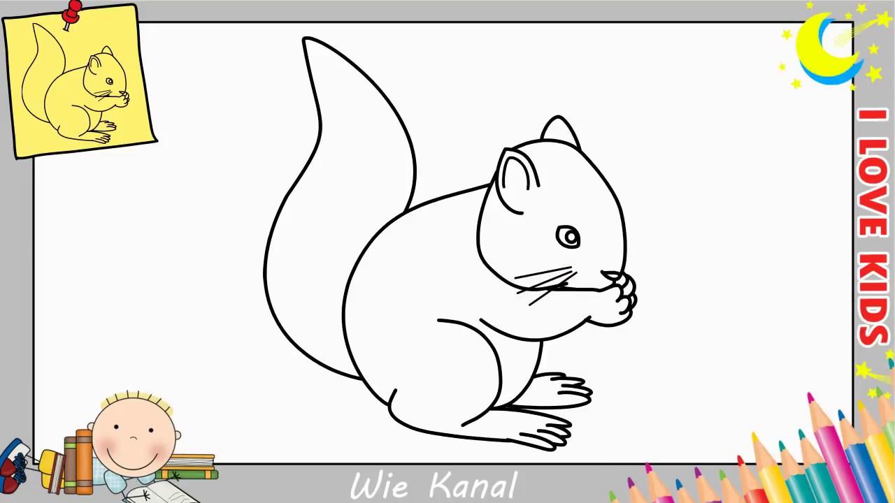 Wie Zeichnet Man Einen Eichhörnchen Schritt Für Schritt Für Anfänger