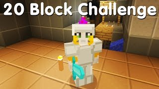 Minecraft PS4 - 20 Block Challenge -  Hot Topic (14)