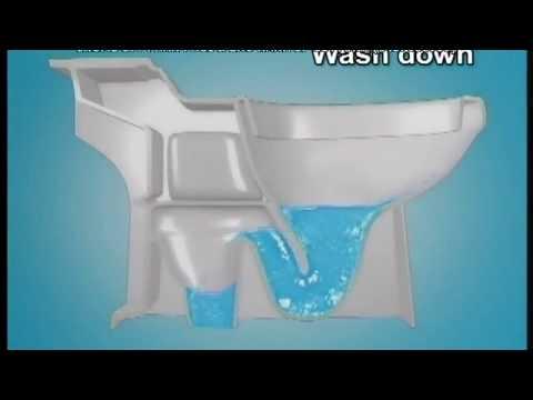 (eHOME 04 3766 6909) Các kiểu xả nước của bệt Cotto