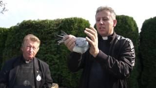 Aukcja gołębi - katedra w Opolu - zapr...
