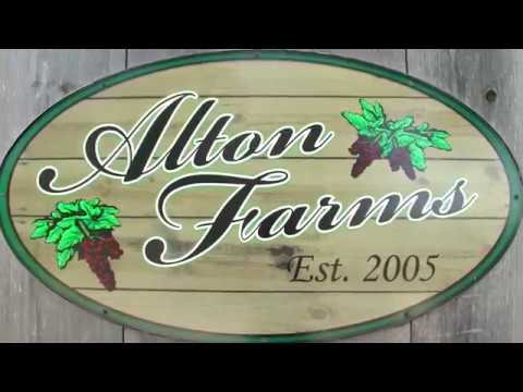Alton Farms-Local Business of the Month