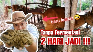 Download lagu Cara membuat pupuk kohe sapi TANPA Fermentasi, 2 hari JADI