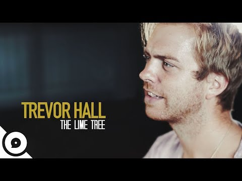 Trevor Hall - The Lime Tree | OurVinyl Sessions