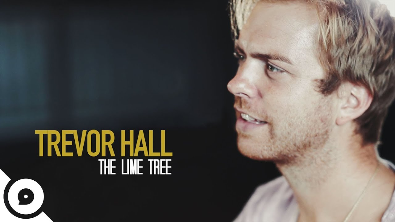 The Lime Tree chords & lyrics - Trevor Hall - Jellynote
