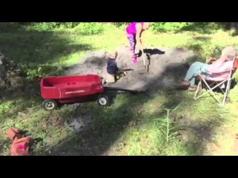 first time vegetable garden preparation - youtube, Gartenarbeit ideen