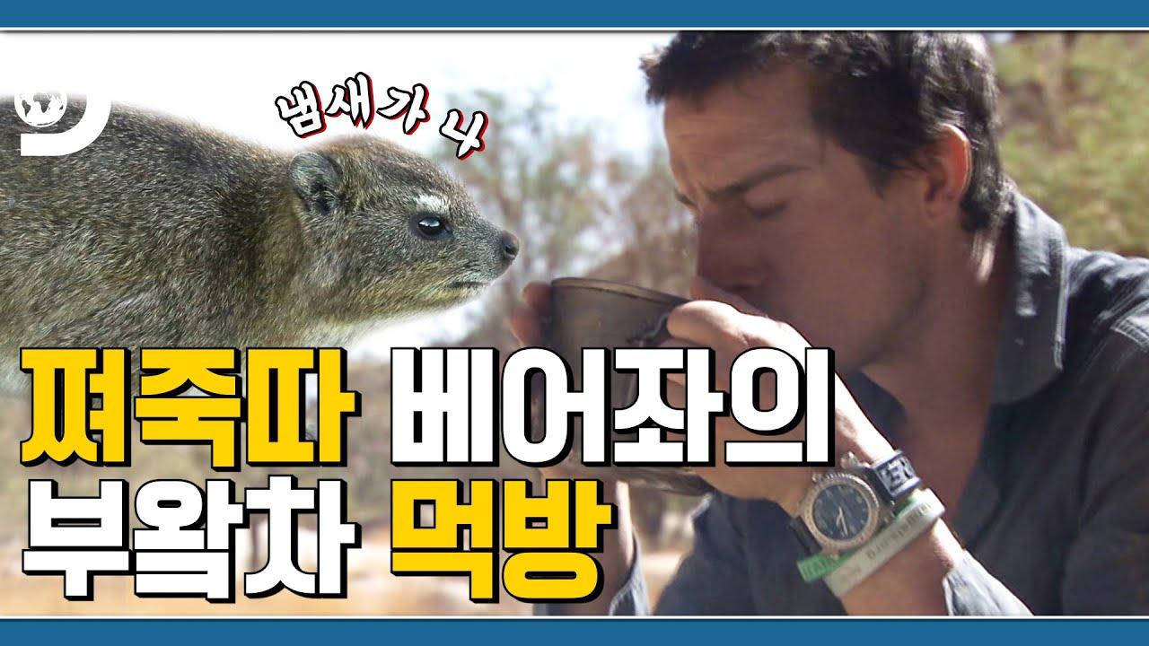A-12번 손님 주문하신 부왘차 나왔습니다💩 사막에서 티타임 즐기는 베어 형 [Man vs Wild]