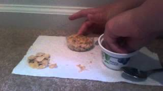 How to make breyer horse food (oats)
