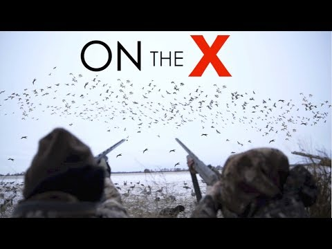 9 MAN LIMIT!!! INSANE Goose Hunting 2018!!!
