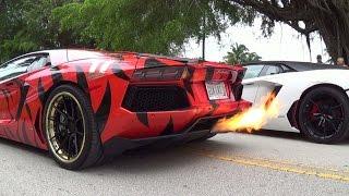 Insane huge revs & flames! lamborghini aventador crazy rev battle gia lai team toy rally must see!!!