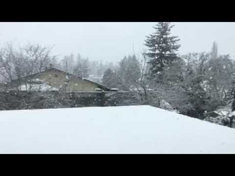 Snowing, Saanich Victoria BC Canada