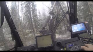 Forestry Tree Harvester GoPro