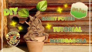 Harry potter tutorial mandragola   mandrake diy room decor