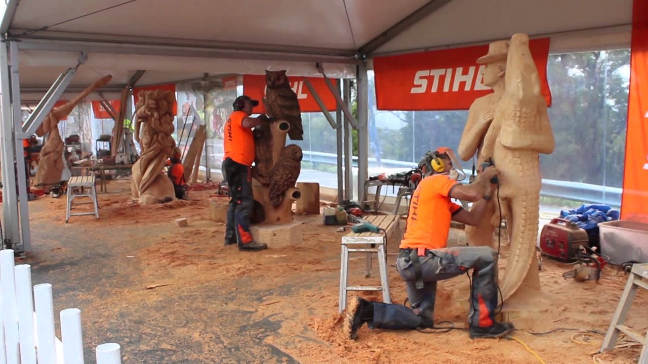 Australian chainsaw carving championships mt