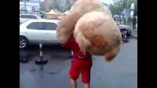 Парень купил большого медведя девушке большой Тэд)(, 2013-08-13T02:12:52.000Z)