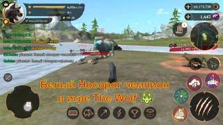 Белый Носорог чемпион в игре The Wolf 🐺 игра game , смотреть мультфильмы онлайн мультики для детей