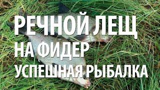 ЛОВЛЯ ЛЕЩА на ФИДЕР с НОРМУНДОМ ГРАБОВСКИСОМ на РЕКЕ(Ловля леща на фидер с берега на рыбалке с Нормундом Грабовскисом на реке. На что лучше ловить рыбу лещ на..., 2015-09-08T15:22:18.000Z)