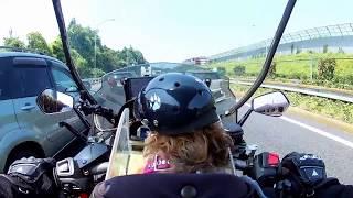 バイク犬 ティナ 26 東名高速道路2  渋滞の先頭!by gilera fuoco 500(motorbike dog)