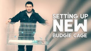 Setting up New Budgie Cage | Vlog #19