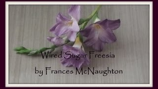 Sugar freesia - fast version