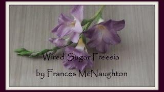 Sugar freesia - fast version