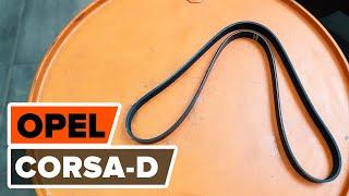 Montaż Pasek klinowy wielorowkowy OPEL CORSA D: darmowe wideo