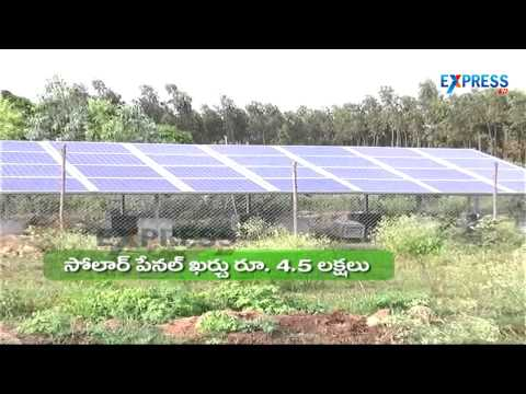 Organic cultivation in Pomegranate and uses of Solar energy - Paadi Pantalu