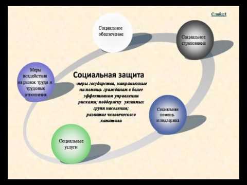 Абдакимова, Киселева   ПЛ Социальная политика защиты детства
