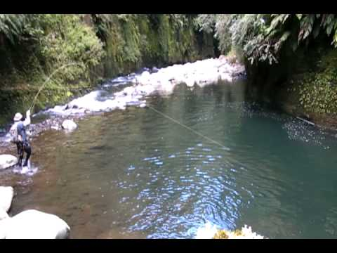 Thumbnail: Fly fishing in some of the best trout fishing water I have ever seen!