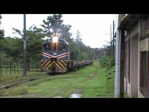 Recorrido del tren de carga con lingote Moín - Guácimo