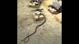 COMILLA  RAL STASION SHAP AND VAGE KHELA