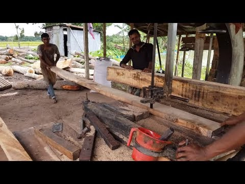 Fast Way of Cutting Teak Wood into Small PCs।Skilled Craftsmen Cutting Teak Wood।Teak Wood Cutting