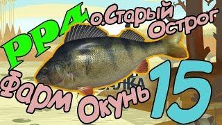 Русская рыбалка 4: НОВЫЙ спиннинг и фарм серебра на Окуне о. Старый Острог