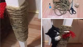 как сделать когтеточку для кошки своими руками видео