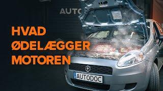 Skifte Bremseklods FIAT DOBLO - vedligeholdelsestips til Bremsesystem