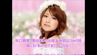 タレント、矢口真里(33)が21日、東京都内で行われた米映画「ヘイ...