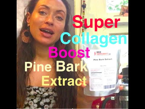 Pine Bark extract: Collagen Booster/SUPER Antioxidant