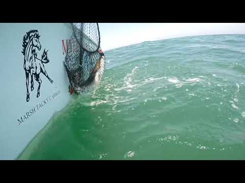 Good Company Fishing Team Hatteras May 2019