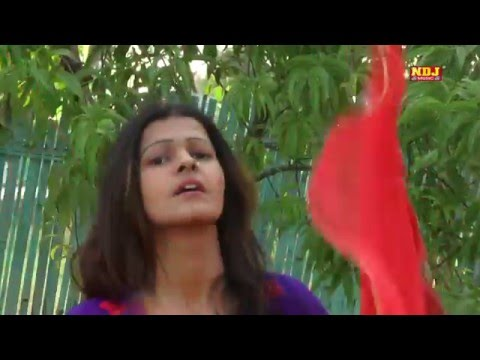 New Haryanvi Song 2016 | पल्ला साड़ी का । 2016 lattest Dance Song Haryanvi | NDJ Music