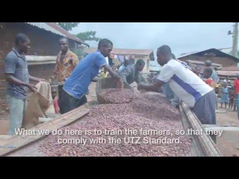 The Cocoa Beans of Ghana (English)