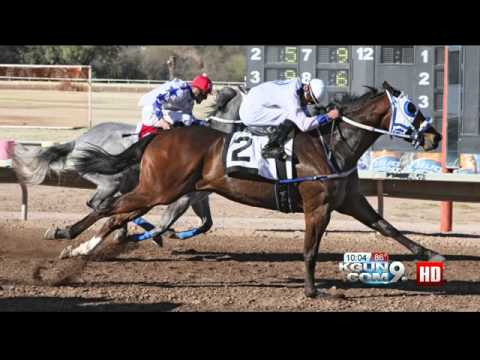 Horse Racing Enthusiasts Fight Over Turf At Rillito Park Race Track