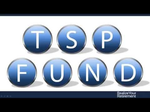 Government TSP: Overview of the Federal Thrift Savings Plan Funds