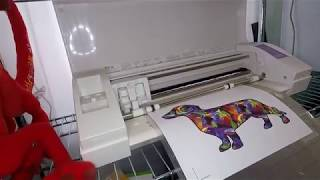How to Use Siser EasySubli with Your Sawgrass Printer and Silhoutte Cameo