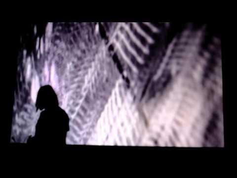 Modular Wild Vists New Media and Art Sound Summit 2015- Alessandro Cortini
