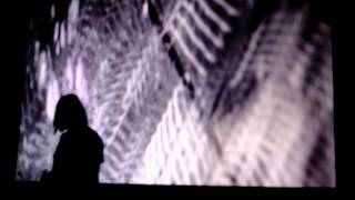 Modular Wild Vists New Media and Art Sound Summit 2015- Alessandro Cortini