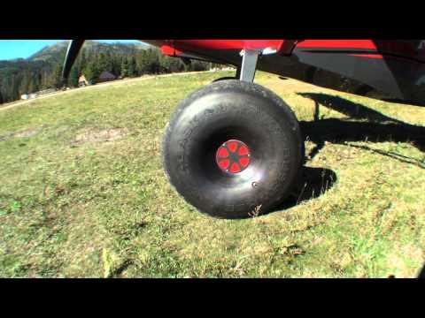 American Champion Denali Scout Review