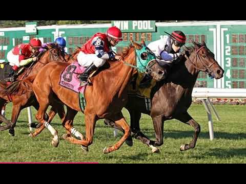 Saratoga, Travers, Del Mar, Pacific Classic; Game on Dude, Monmouth, Calder, Woodbine - Horse Lovers