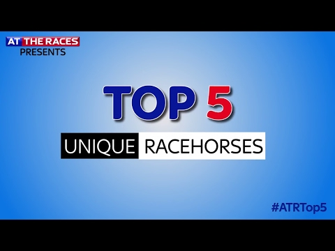 Top 5 Unique Looking Racehorses