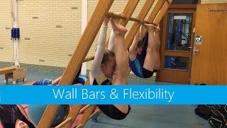 Wall Bars & Flexibility